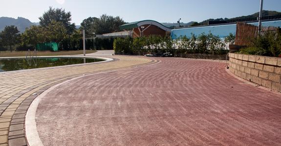 Pavimento pettinato la pavimentazione per esterno antiscivolo - Cemento colorato per esterni costo ...